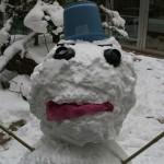 雪だるまを作ってみました(*^_^*)