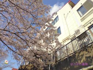 4月スタート②
