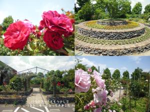 ひまわり園開園記念日⑦